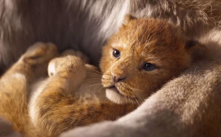 《狮子王》真人版预告放出,再现原作经典镜头