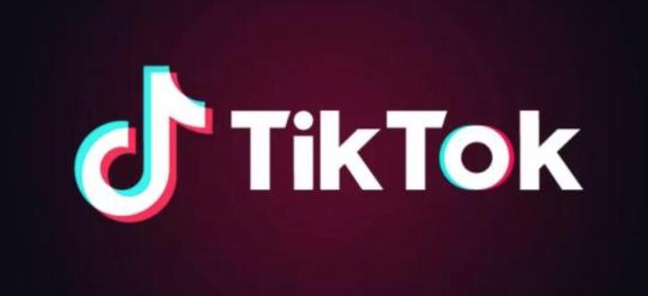 谷歌根据法院禁令将TikTok从印度下架