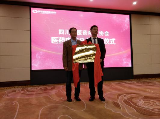 全国首个省级医药电商分会在蓉成立