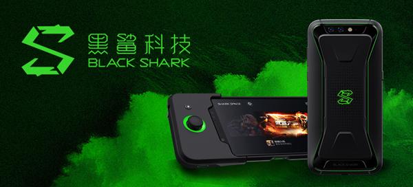 图10 黑鲨.jpg