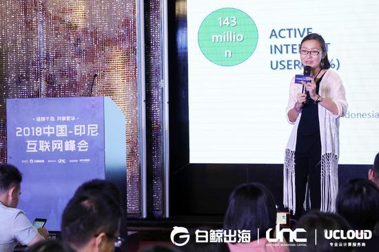 印尼本地投资基金 DNC 合伙人 Irene 介绍印尼市场