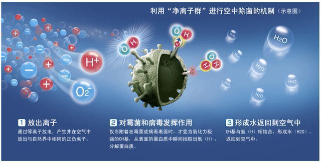 夏普冰箱三大技术亮点介绍净离子群技术加成高端产品