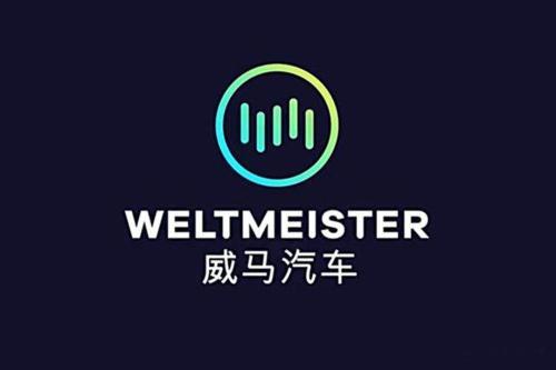 威馬汽車關聯公司成立新公司,注冊資本5億